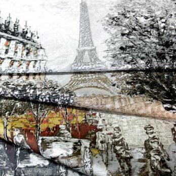Paris (Жаккард)